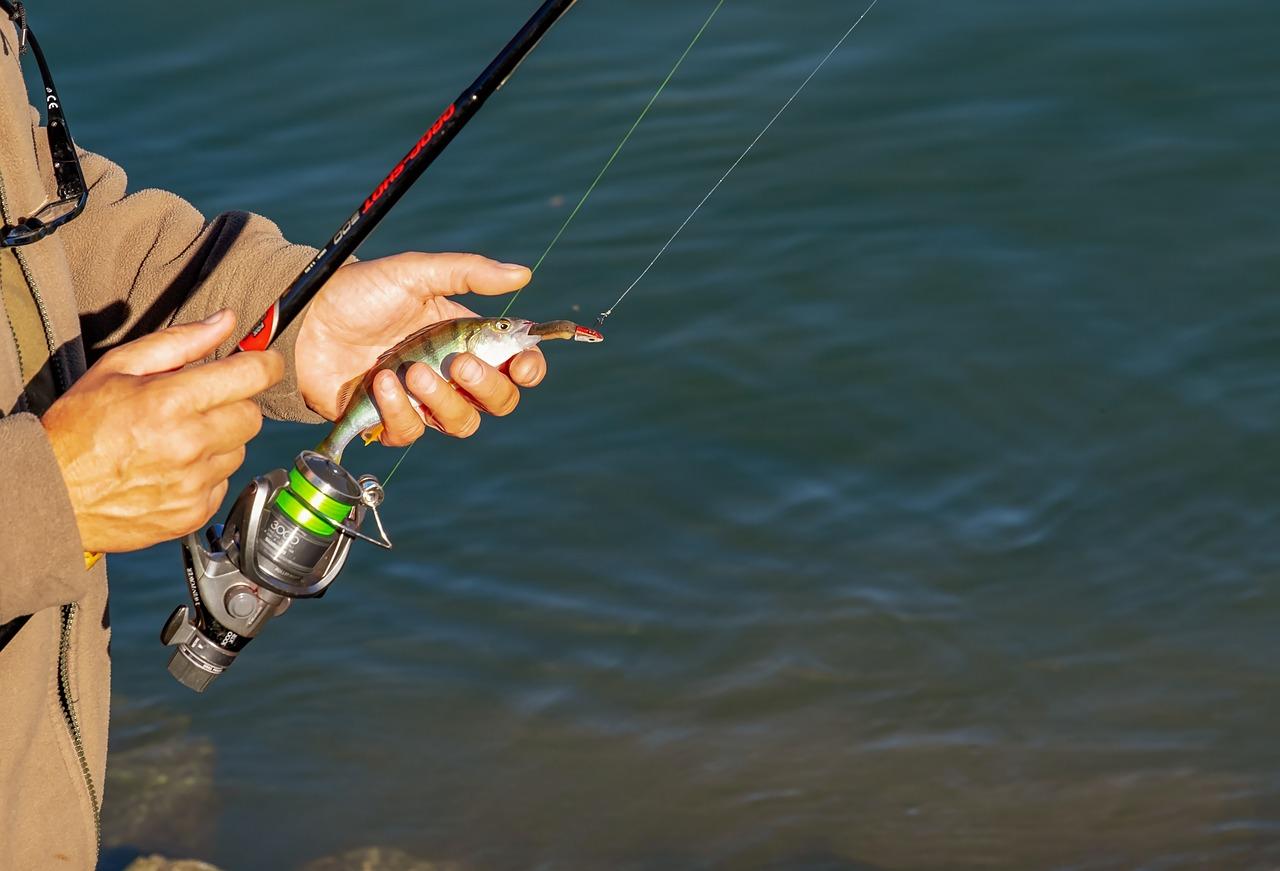 Quelques règles pratiques à éviter lorsqu'on fait de la pêche